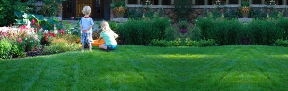 Organic Lawn Care at Clean Air Lawn Care