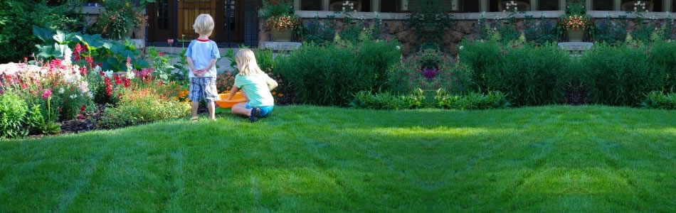 Sustainable Organic Lawn Care Services & Yard Maintenance ...